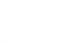 reckcreation-logo-vit